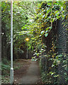 SP1582 : Footpath with street lighting along the boundary of the Land Rover works, Olton by Robin Stott