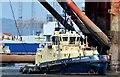 """J3676 : The """"Svitzer Sussex"""", Belfast - June 2015(1) by Albert Bridge"""