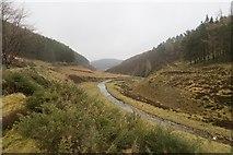 NJ3133 : River Fiddich by Richard Webb