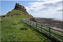 NU1341 : Lindisfarne Castle by Philip Halling