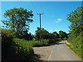 TL5100 : Berwick Lane, near Stanford Rivers by Malc McDonald