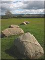 NY6408 : Granite stones at Gamelands stone circle, Orton by Karl and Ali