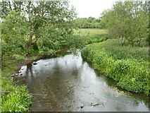 TQ1298 : River Colne by Robin Webster