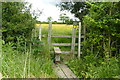 SE6113 : Stile and hedge near Hawkhouse Green by Graham Hogg