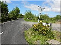 H5475 : Fernagh Road, Oxtown by Kenneth  Allen
