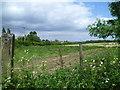 TQ4461 : View from Snag Lane by Marathon