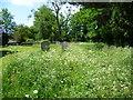 TQ4459 : In St Peter & St Paul Churchyard, Cudham by Marathon