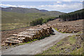 J3431 : Logs, Tollymore Forest Park by Rossographer