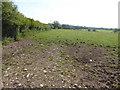 SJ4552 : Muddy field entrance by Eirian Evans