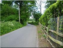 TQ4357 : Buckhurst Road by Marathon