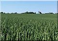 TL5246 : Up hill to Abington Park Farm by John Sutton