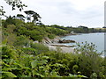 SW7626 : View overlooking the private beach at Trebah Gardens by don cload