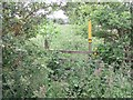 SK4528 : Overgrown stile on the footpath to Castle Donington by Ian Calderwood