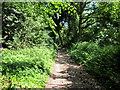 SJ5273 : The Delamere Way near Crossley Park by Jeff Buck