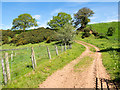 NY6823 : Dirt road north of Stock Bridge by Trevor Littlewood