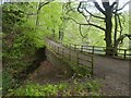 NZ1759 : Riverside footpath at the northern end of Gibside Estate by Derek Voller