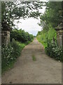 SE7266 : Pillared  gateway  to  Whitwell  Road by Martin Dawes