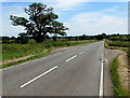 ST7980 : East along the B4040 towards Acton Turville by Jaggery