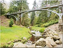 NU0702 : The Iron Bridge, Cragside, Northumberland by Derek Voller