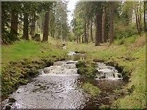 NU0702 : Waterfalls on Debdon Burn, Cragside Estate, Northumberland by Derek Voller