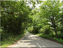 TM1381 : Woolsey Bridge on Burston Road by Adrian Cable