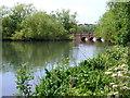 TQ2187 : Cool Oak Bridge by Ian Paterson