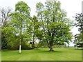 NZ0384 : Wallington Estate gardens by Derek Voller