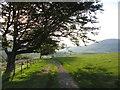 NY2825 : Path on Latrigg by Gareth James