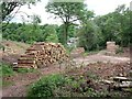 SK0444 : Timber stacks and tree clearance in Sutton's Wood by Ian Calderwood