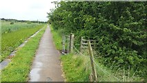 SD7908 : Manchester, Bolton and Bury Canal towpath by Bradley Michael