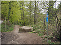 SS8086 : The start of a cycle path, Margam Country Park (2) by eswales