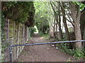 SJ7686 : Path between Marlborough Road and Langham Road by Richard Sutcliffe