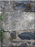 NO4203 : OS benchmark - Upper Largo, wall opposite South Feus by Richard Law