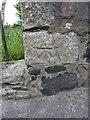 NO4203 : OS benchmark - Upper Largo, wall beside Eagle Gates entrance by Richard Law