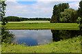 SE3367 : River Ure near Bishop Monkton by Chris Heaton