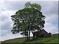 SJ9969 : Cumberland Cottage by Stephen Burton