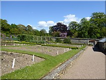 SS6140 : The walled garden at Arlington Court by David Smith
