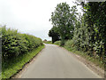 TM1797 : Norwich Road, Hapton. A quiet country road by Adrian S Pye