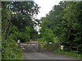 SP9962 : Track into West Wood by Bikeboy