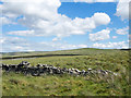 NY7543 : Grassy moorland beyond ruined wall by Trevor Littlewood