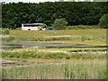 SD5830 : Brockholes Nature Reserve by David Dixon