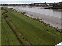ST5491 : West bank of the River Wye near Chepstow by Jaggery