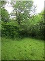 SU0022 : Footpath to Woodminton by Derek Harper