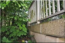 SS9612 : Tiverton : Footbridge by Lewis Clarke