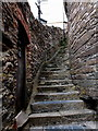 SX8750 : Steep steps up to Newcomen Road, Dartmouth by Jaggery