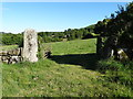 SX7082 : Huge stone gatepost near West Coombe by Neil Theasby