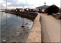 SZ3394 : Path towards Lymington Marina by Jaggery