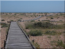 TR0916 : Dungeness: boardwalk to the beach by Chris Downer