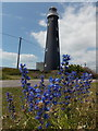 TR0816 : Dungeness: the old lighthouse by Chris Downer