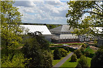 TQ1876 : View from treetop walkway, Kew - Temperate house by N Chadwick